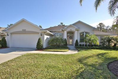 Ormond Beach Single Family Home For Sale: 1273 Harwick Lane