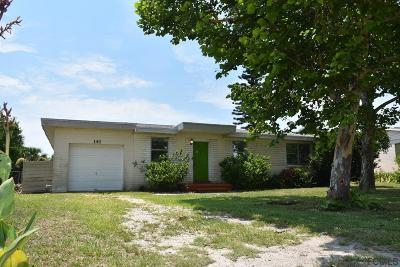 Ormond Beach Single Family Home For Sale: 141 Lucky Drive