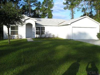 Matanzas Woods Single Family Home For Sale: 31 Lindberg Lane
