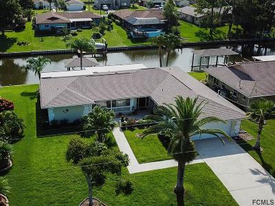 Palm Coast Single Family Home For Sale: 15 Clearview Ct S