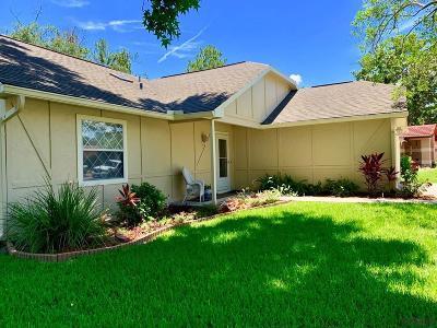 Palm Coast Single Family Home For Sale: 6 Westlee Ln