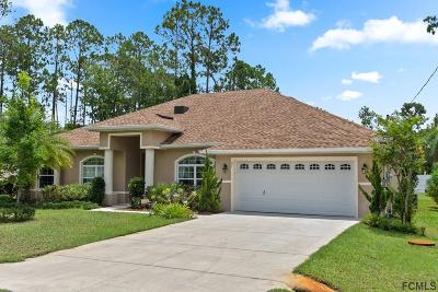 Palm Coast Single Family Home For Sale: 27 Ethan Allen Drive