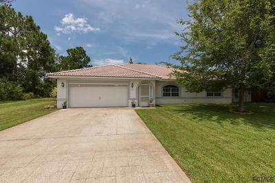 Palm Coast Single Family Home For Sale: 23 Prince Anthony Ln
