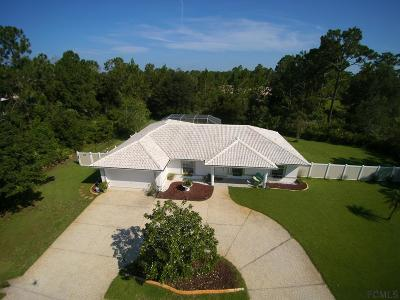 Palm Coast Single Family Home For Sale: 67 Prince Eric Ln