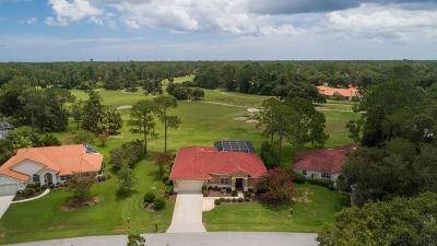 Palm Coast Single Family Home For Sale: 4 Sutton Court