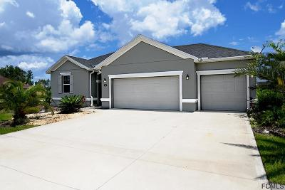 Palm Coast Single Family Home For Sale: 102 South Starling Dr