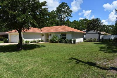 Palm Coast Single Family Home For Sale: 9 Rydell Lane