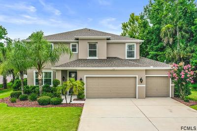 Palm Coast Single Family Home For Sale: 38 Riviere Lane