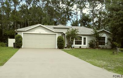 Palm Coast Single Family Home For Sale: 118 Plain View Drive