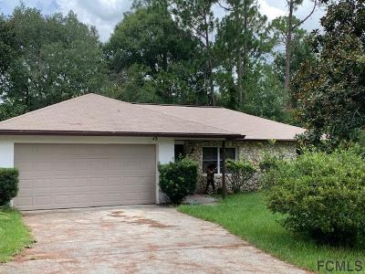 Palm Coast Single Family Home For Sale: 75 Brunett Lane