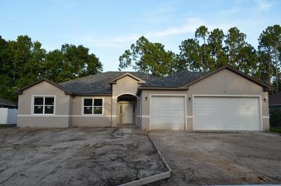 Palm Coast Single Family Home For Sale: 98 Evans Dr