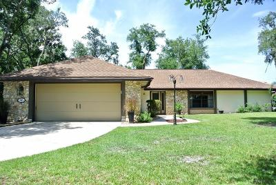 Palm Coast Single Family Home For Sale: 86 Furness Place