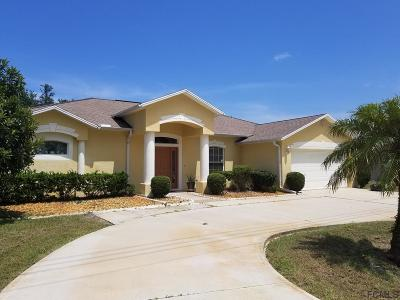 Palm Coast Single Family Home For Sale: 74 Frontier Dr