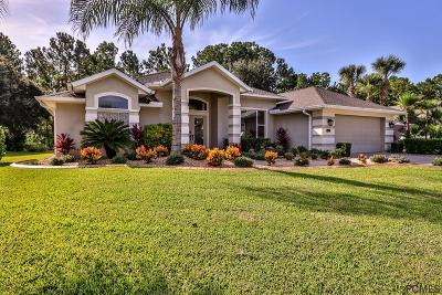 Ormond Beach Single Family Home For Sale: 1241 Sunningdale Lane