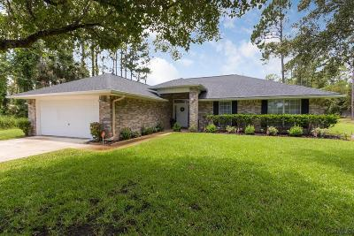 Palm Coast Single Family Home For Sale: 41 East Diamond Drive