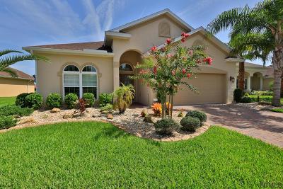 Palm Coast Single Family Home For Sale: 144 Arena Lake Dr