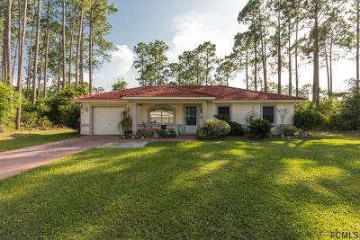 Palm Coast Single Family Home For Sale: 22 Lloyd Trail