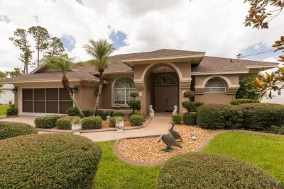 Palm Coast Single Family Home For Sale: 48 Wellstream Lane