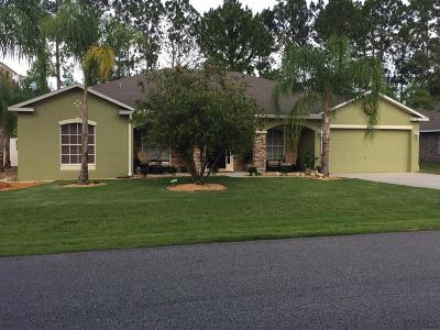 Palm Coast Single Family Home For Sale: 66 Sloganeer Trail