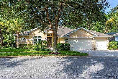 Palm Coast Single Family Home For Sale: 11 Creekside Dr