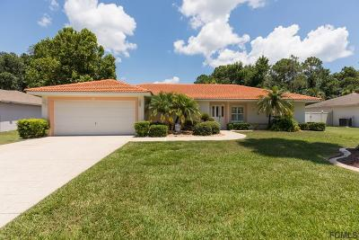 Palm Coast Single Family Home For Sale: 25 Rivera Lane