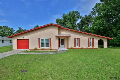 Palm Coast Single Family Home For Sale: 119 Farragut Drive