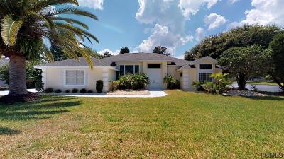 Ormond Beach Single Family Home For Sale: 63 Bay Lake Dr