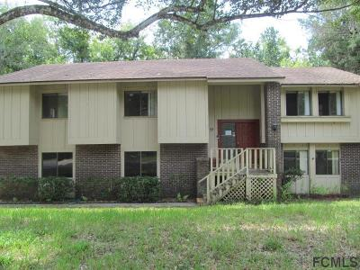 Ormond Beach Single Family Home For Sale: 97 Hollow Branch Crossing