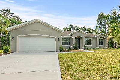 Ormond Beach Single Family Home For Sale: 3428 Saltee Circle