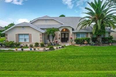 Palm Coast Single Family Home For Sale: 123 Colechester Lane