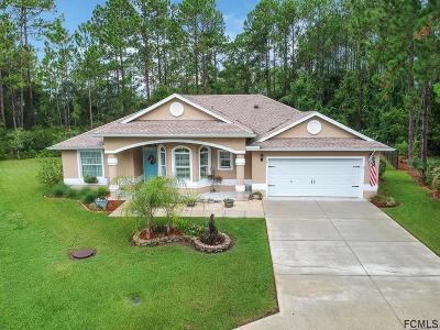 Palm Coast Single Family Home For Sale: 15 Llowick Court