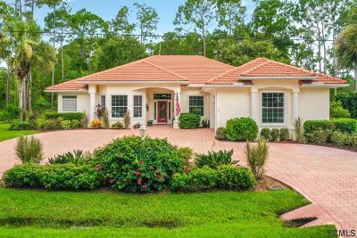 Palm Coast Single Family Home For Sale: 71 Eastwood Drive