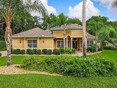 Palm Coast Single Family Home For Sale: 22 Clementina Court