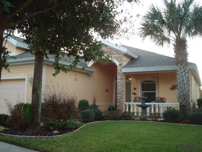Palm Coast Single Family Home For Sale: 48 Southlake Dr