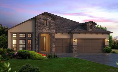 Ormond Beach Single Family Home For Sale: 209 Heatherwood Ct