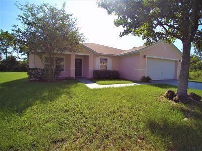 Palm Coast Single Family Home For Sale: 28 Lee Drive