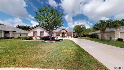 Palm Coast Single Family Home For Sale: 47 Mount Vernon Lane
