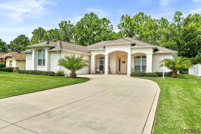 Palm Coast Single Family Home For Sale: 78 Wynnfield Drive