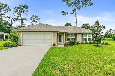Palm Coast Single Family Home For Sale: 33 Westover Dr
