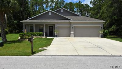 Palm Coast Single Family Home For Sale: 61 Woodlawn Drive