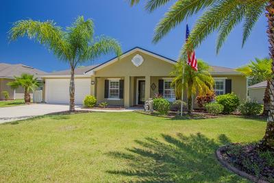 Palm Coast Single Family Home For Sale: 10 Riviera Estates Court