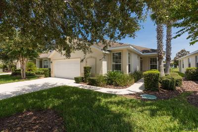 Palm Coast Single Family Home For Sale: 103 Raintree Cir