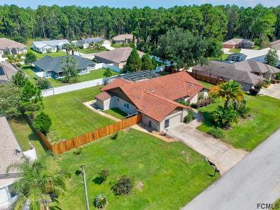 Palm Coast Single Family Home For Sale: 6 Woodward Ln