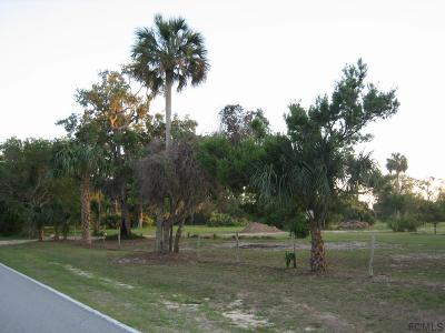 Flagler Beach Residential Lots & Land For Sale: 5620 John Anderson Hwy