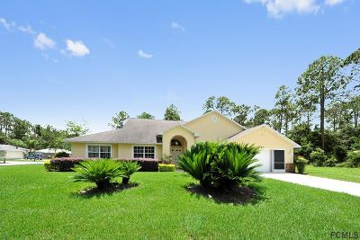 Palm Coast Single Family Home For Sale: 34 Rylin Lane