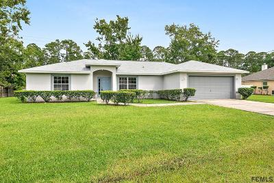 Palm Coast Single Family Home For Sale: 20 Emerson Dr