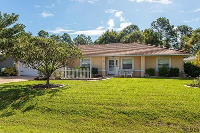 Palm Coast Single Family Home For Sale: 39 Princess Kim Ln