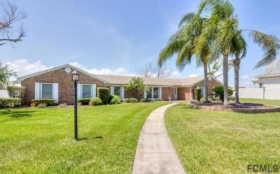 Ormond Beach Single Family Home For Sale: 520 John Anderson Dr