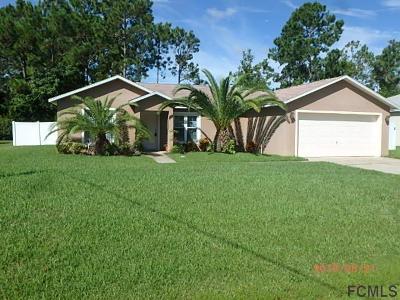 Palm Coast Single Family Home For Sale: 54 Pennsylvania Ln