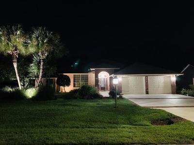 Palm Coast Single Family Home For Sale: 119 Barrington Dr